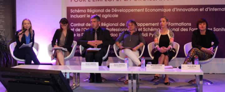 Rencontres de la stratégie Régionale pour l'Emploi et la Croissance de la Région Languedoc Roussillon Midi Pyrénées – 6 au 15 juin 2016